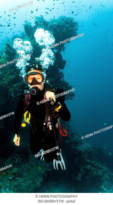Scuba diver at wreck of USAT Liberty, Tulamben, Bali, Indonesia