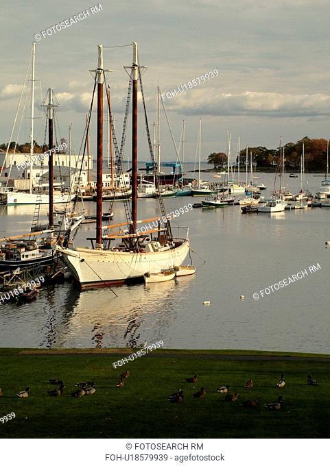 Camden, ME, Maine, Harbor, boats