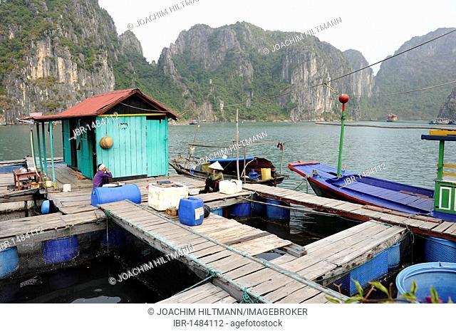Floating fish farming, Halong Bay, Vinh Ha Long, North Vietnam, Vietnam, Southeast Asia, Asia