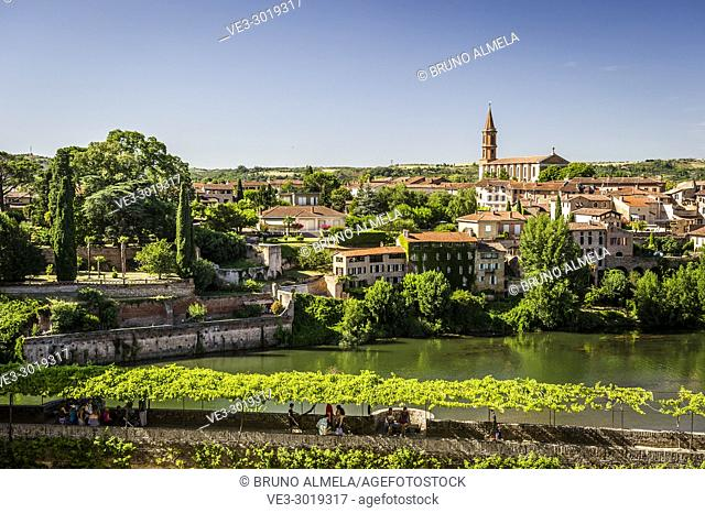 View of Madeleine's Church and Tarn river from Berbie Palace, Albi (Tarn Department, Occitanie Region, France)