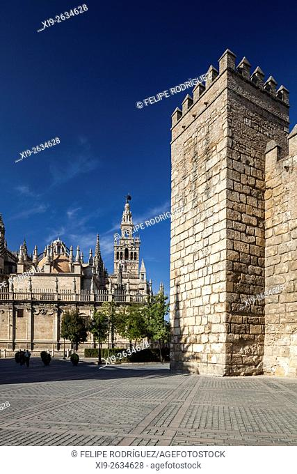 South side of Seville Cathedral (left), and the walls of the Real Alcazar (Royal Castle, right), Spain