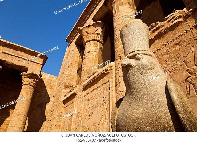 Falcon god Horus. Temple of Horus. Edfu. Nile Valley. Egipt