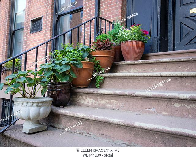 Attractive display of flower pots placed on each step of a brick residential building in Brooklyn Heights, New York