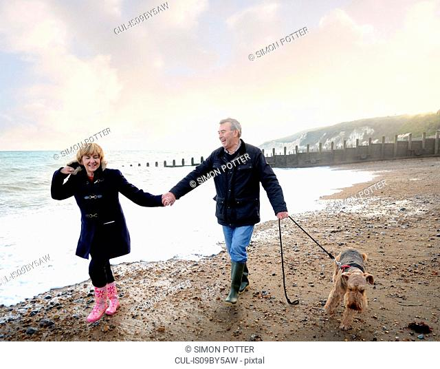 Romantic senior couple holding hands and walking dog on beach, Eastbourne, East Sussex, England