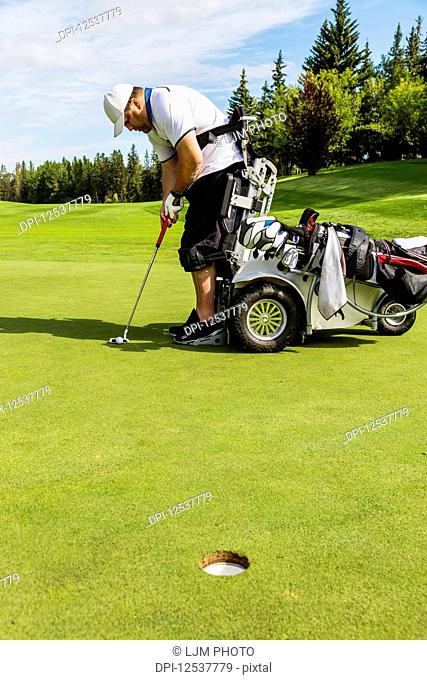A physically disabled golfer lining up his shot before putting a ball on a golf green and using a specialized golf assistance motorized hydraulic wheelchair;...