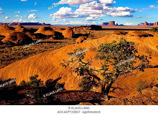 Mystery Valley, Utah (Monument Valley)