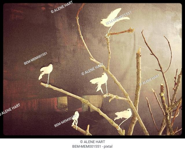 White birds decorating wooden branches