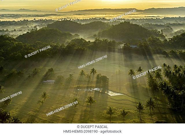 Philippines, Visayas archipelago, Bohol island, Carmen area, paddy field in the Chocolate Hills at sunrise
