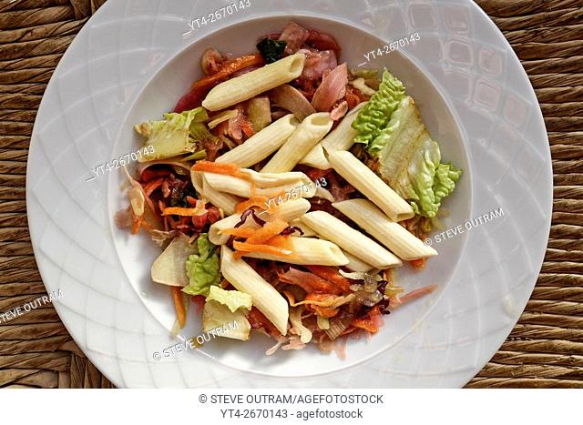 Chopped Mixed Vegetables and Penne Rigate Pasta Salad