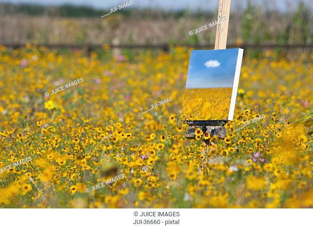 Painting of wildflowers in sunny meadow