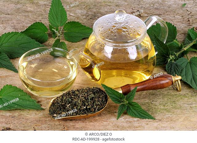 Cup and teapot with Nettle tea, Urtica dioica
