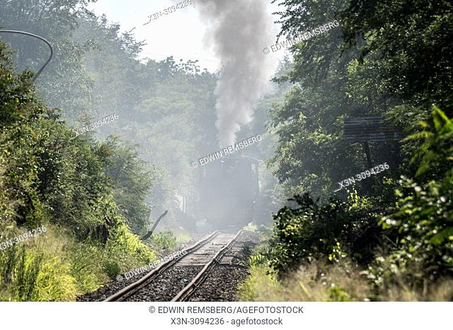 A Garratt locomotive trudges forward through the steam filled air. Victoria Falls, Zimbabwe