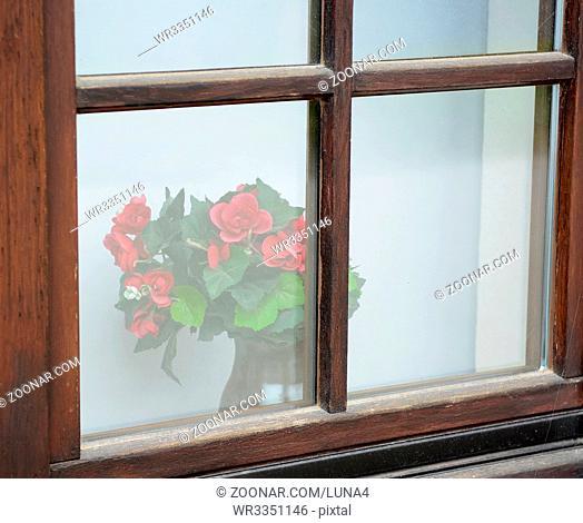 Fenster mit Rosen  red roses behind old window