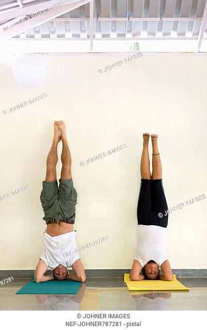 People performing yoga, India