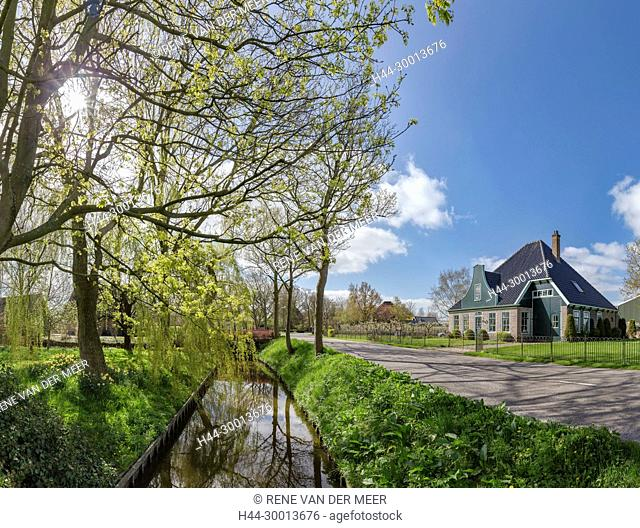 Traditional Dutch farmhouse built in the shape of a cheese-cover