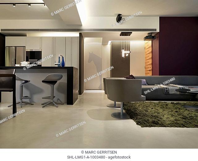 Open modern great room