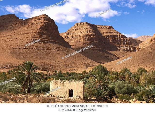 Gorges du Ziz, Ziz Valley, Ziz Gorges, Tafilalet region, Morocco, North Africa
