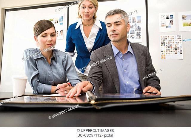 Businesspeople looking at portfolio