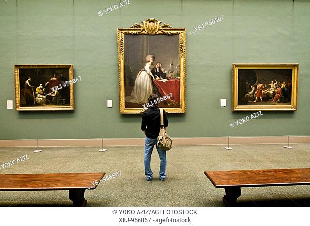 The Metropolitan Museum of Art, Manhattan New York, United States of America