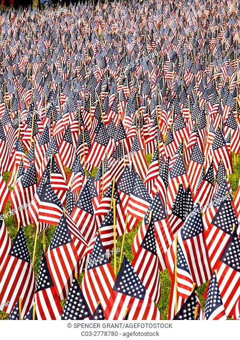 A total of 37,000 US flags are planted in Boston Common to commemorate Massachusetts combat deaths in all wars in observance of Memorial Day