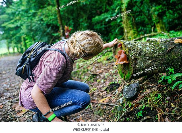 Costa Rica, Woman looking at a mushroom on a tree trunk