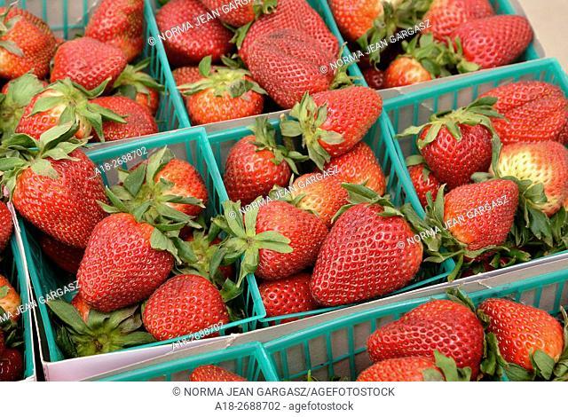 Strawberries, Farmers Market, Tucson, Arizona, USA