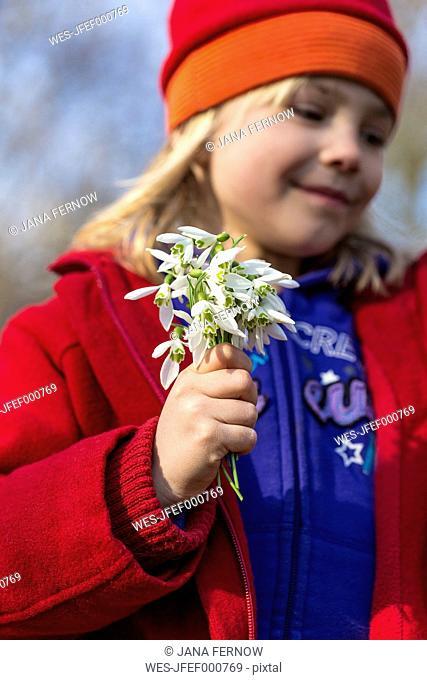 Little girl holding snowdrops