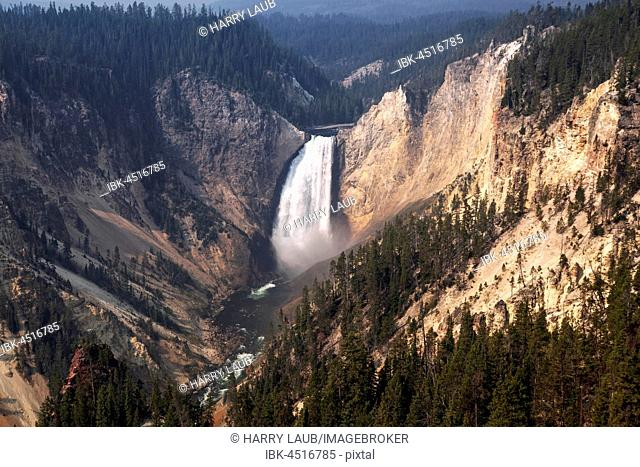 View from the North Rim in the Grand Canyon of the Yellowstone, the Lower Falls, Yellowstone National Park, Wyoming, USA