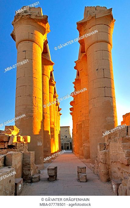 Colonnade in Luxor Temple, Luxor, Upper Egypt, Egypt