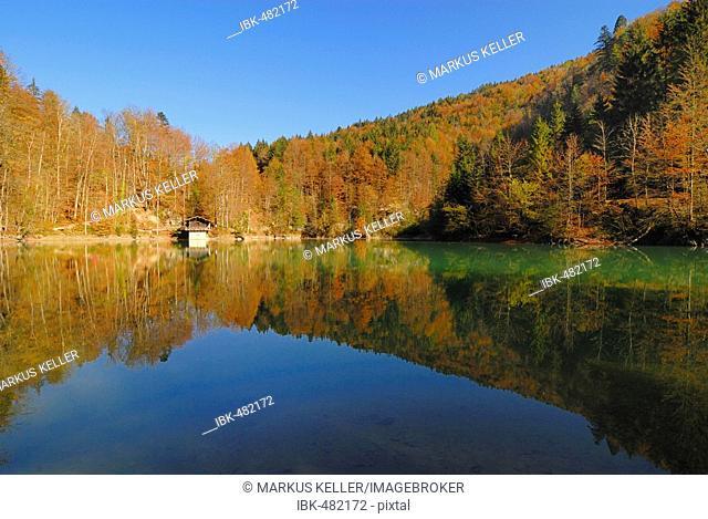 A lake among the Rappenloch- and Alploch canyon - Dornbirn, Vorarlberg, Austria, Europe