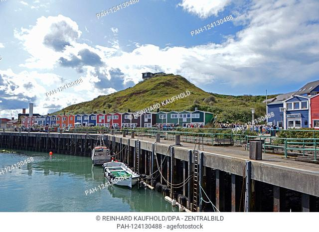 South harbor with its colorful lobster booths on the North Sea island Helgoland, taken on 07.09.2019   usage worldwide. - Helgoland/Schleswig...