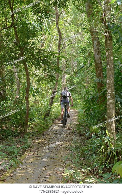 Bicycling in the jungle, Ko Tarutao Island, Thailand