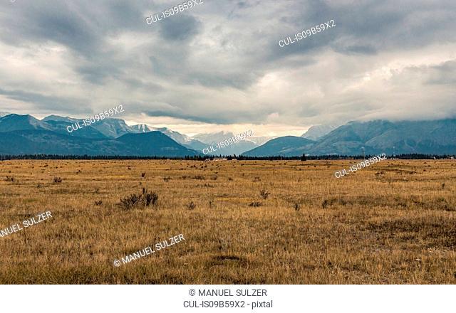 Kananaskis Country, Bow Valley Provincial Park, Kananaskis, Alberta, Canada