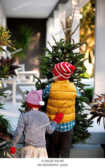 Girl and boy carrying christmas tree