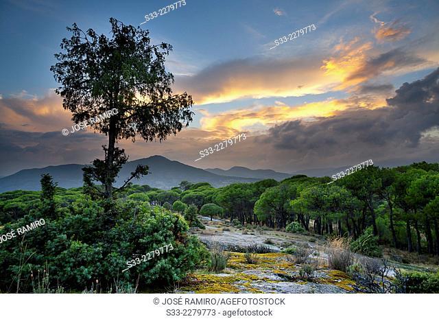 Sunset in Lancharrasa. Cadalso de los Vidrios. Madrid. Spain. Europe