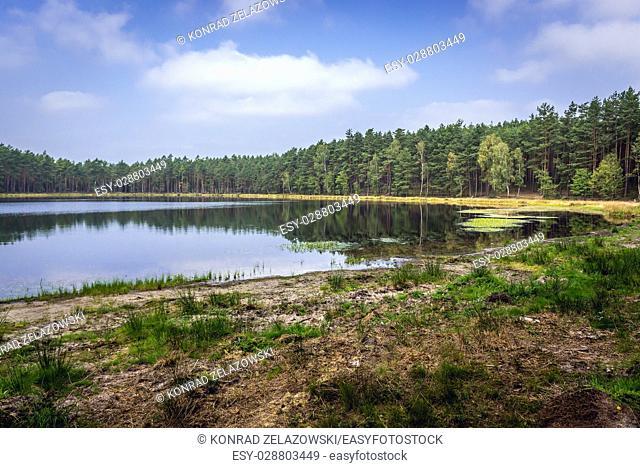 Small lake in Dziemiany commune, Kashubia region of Pomeranian Voivodeship in Poland