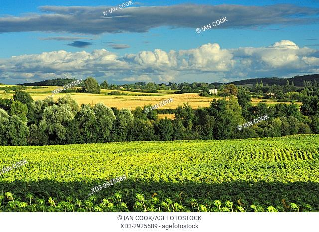 countryside, Lot-et-Garonne Department, New Aquitaine, France