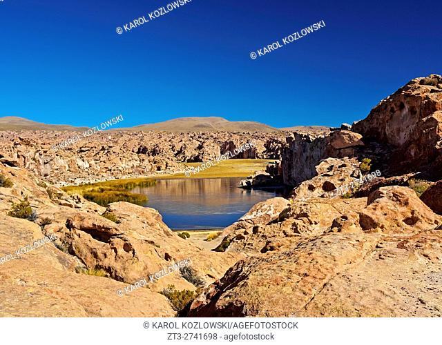Bolivia, Potosi Departmant, Nor Lipez Province, Valle de las Rocas, Landscape of the Laguna Negra
