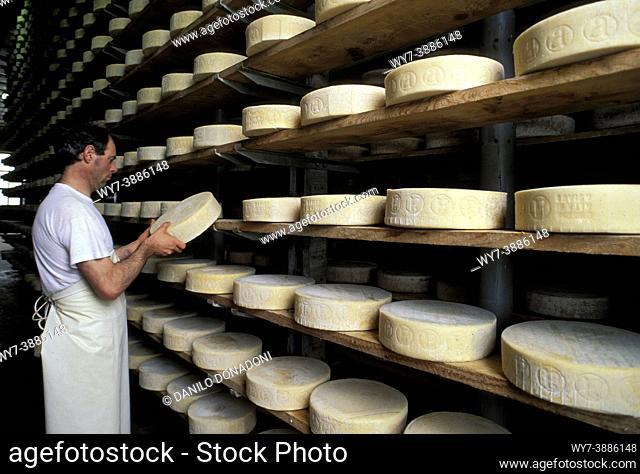 asiago cheese, asiago, italy