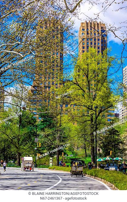 Central Park in springtime, New York, New York USA