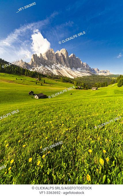 Malga Caseril (Kaserillalm) during spring, Puez Odle, Dolomites, Funes, Bolzano province, South Tyrol, Italy