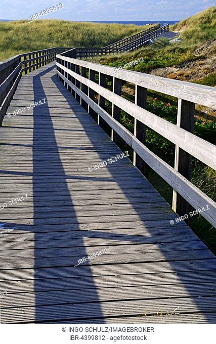 Boardwalk through the dunes to the beach of Kampen, Sylt, North Frisian Islands, North Frisia, Schleswig-Holstein, Germany