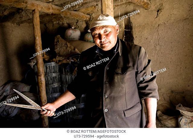 A friendly Kazakh man cuts down the wool of his sheep