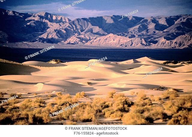 Death Valley NP. California. USA