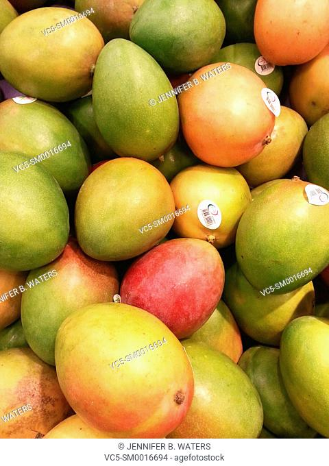 Mangoes for sale at a grocery store in Washington State, USA