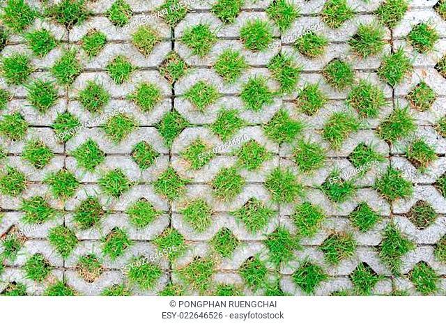 Concrete block with grass