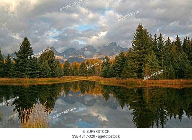 Reflection of mountain and trees in a river, Schwabachers Landing, Snake River, Grand Teton National Park, Wyoming, USA