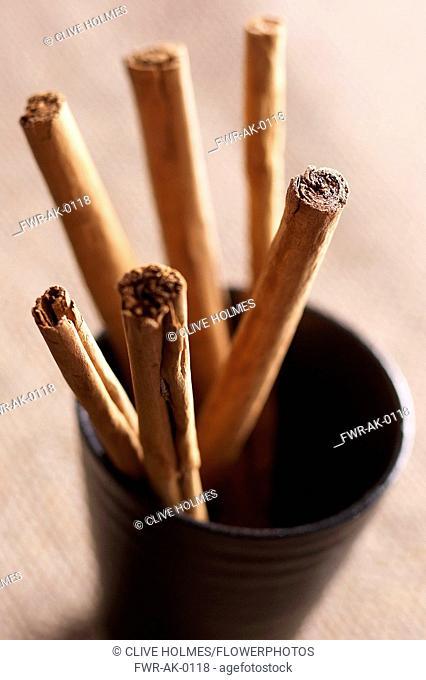 Cinnamon, Cinnamomum verum, Studio shot of dried spice in cup