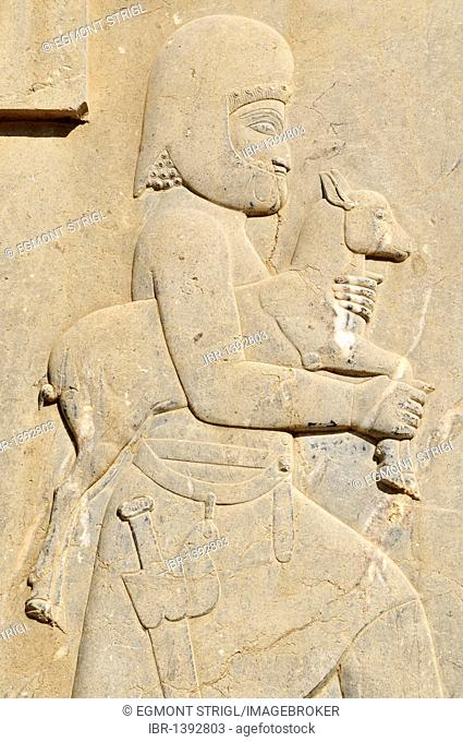 Bas-relief of Median soldier offering a goat at the Achaemenid archeological site of Persepolis, UNESCO World Heritage Site, Persia, Iran, Asia