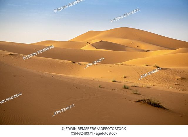 Wind carved sand dunes, Merzouga, Morocco